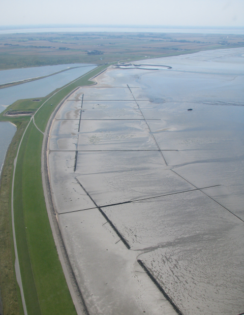 Dike at Beltringharder Koog in North Frisia, Germany